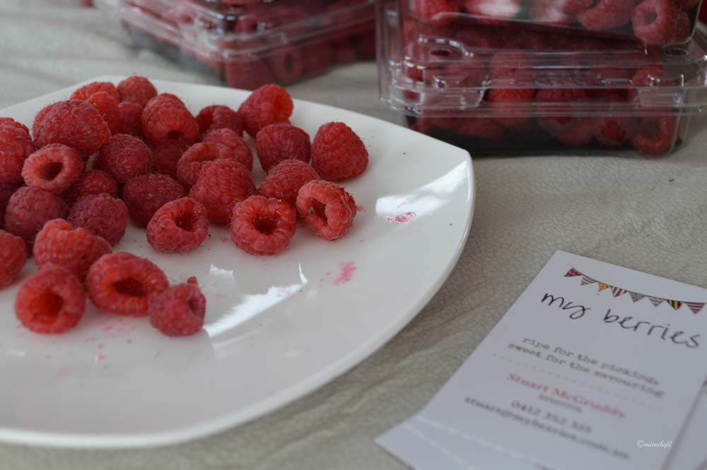 jan-powers-farmers-markets-raspberries